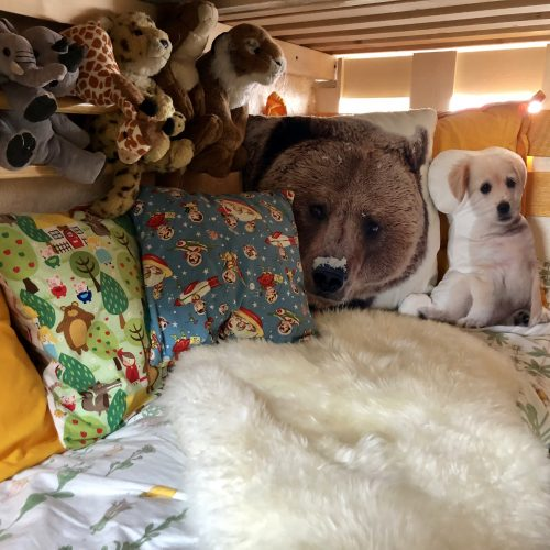 Expedition Family Happiness: Inside Jacky - Loek's bed/playcorner